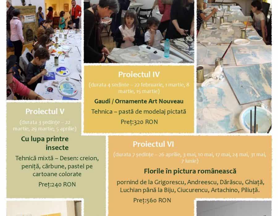 Proiectele semestrului al II-lea, 2017