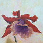 Orhidee I
